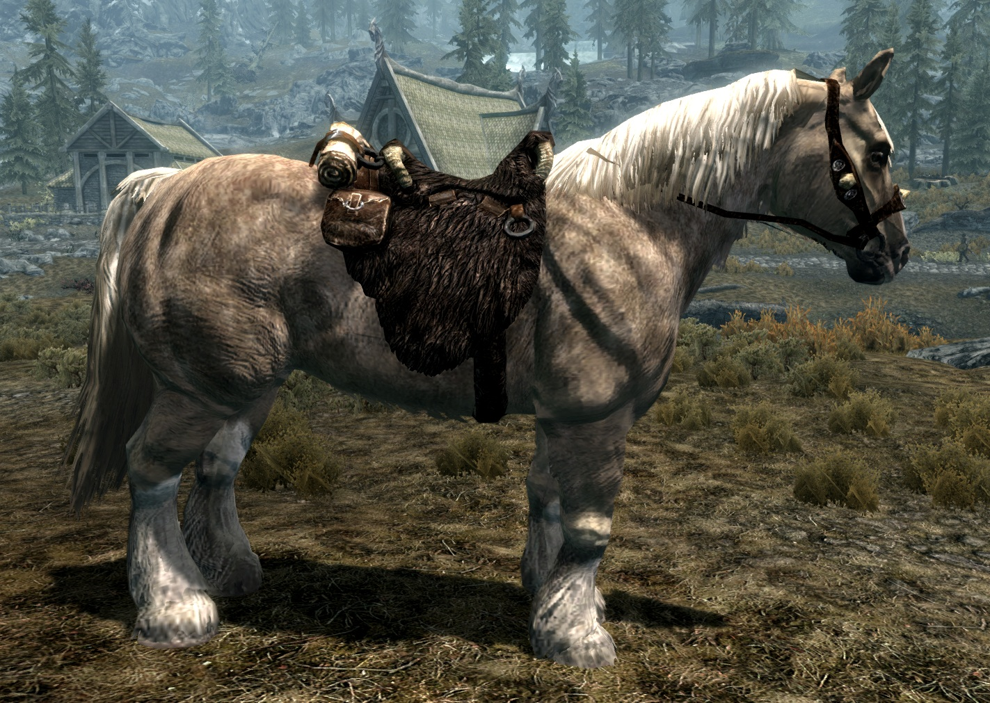 skyrim how to find horse