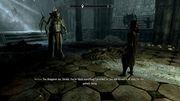 Прохождение Скайрим  Skyrim Dawnguard - За Стражей Рассвета -