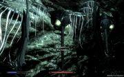 vampire 91s Dawnguard ����������� (�� ��������)