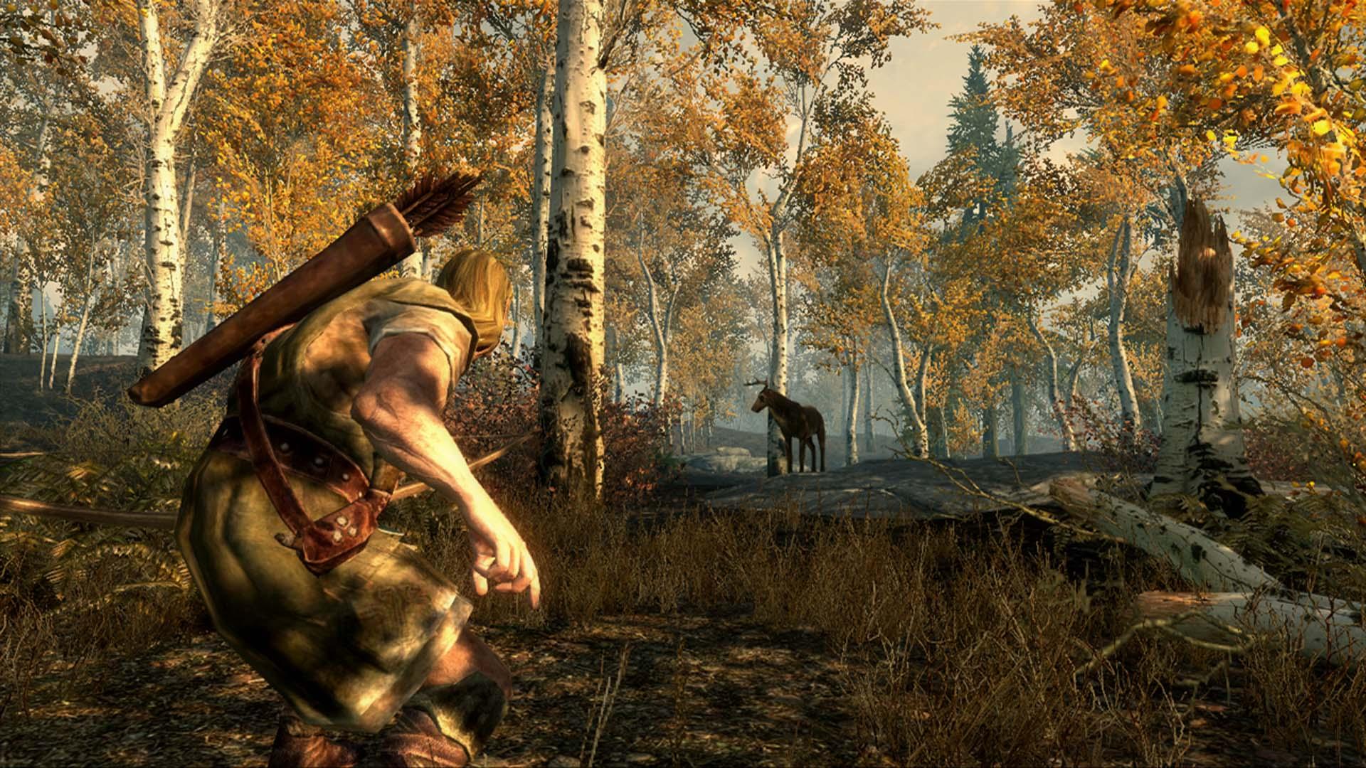 TES V: Skyrim. новости игры, дата выхода, онлайн, скриншоты, скачать, игра, самая...